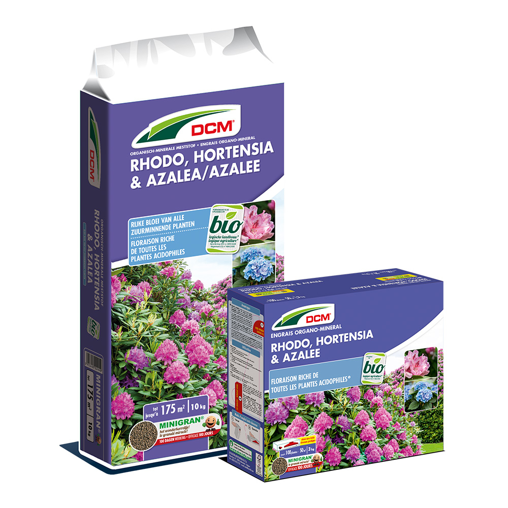 Rhodo-Hortensia-Azalea-fr